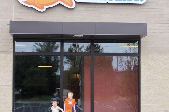 Goldfish Swim School FUN!