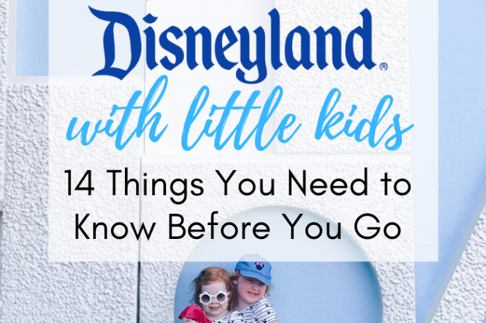 Disneyland with Little Kids: 14 Things You Need to Know Before You Go