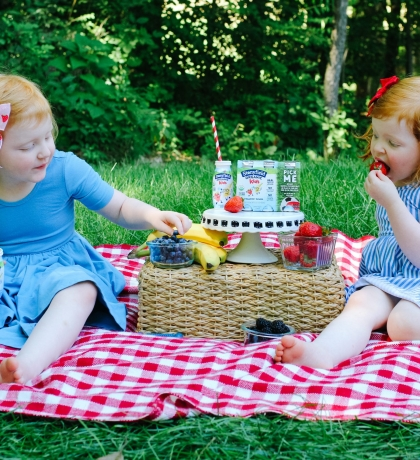 How to Plan a Simple After School Picnic