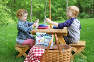 It's the Little Things….Like Picnics