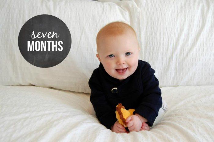 Happy 7 Months Hudson!