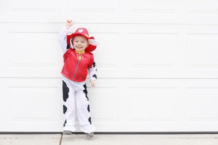 Paw Patrol Halloween Costume